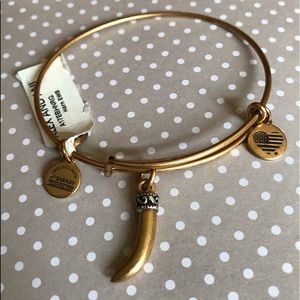 🚨SALE🚨Alex and Ani bangle with horn NWT